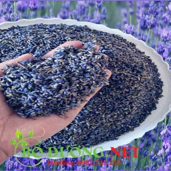 Trà hoa oải hương khô