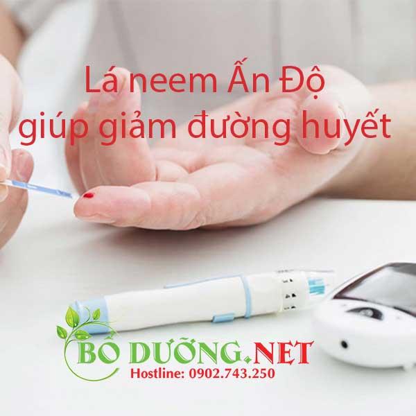 Lá neem trị bệnh tiểu đường