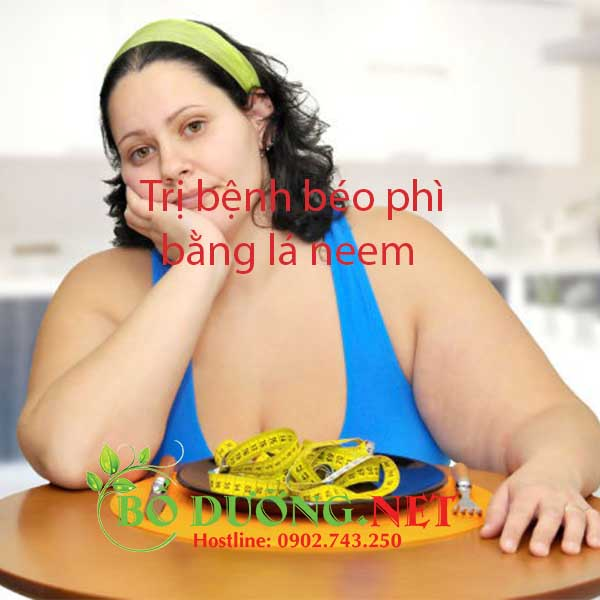 lá neem trị bệnh béo phì